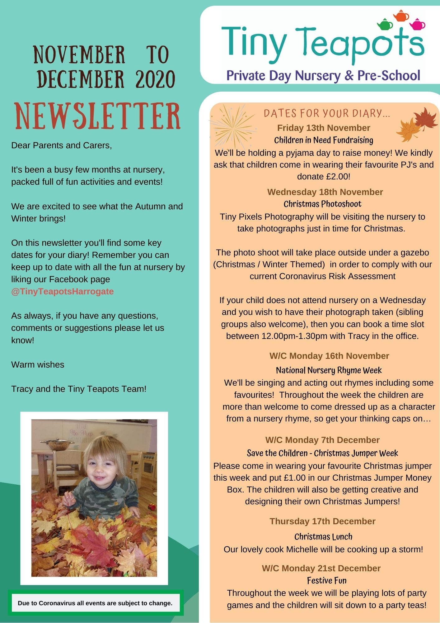 Tiny Teapots Winter Nursery Newsletter